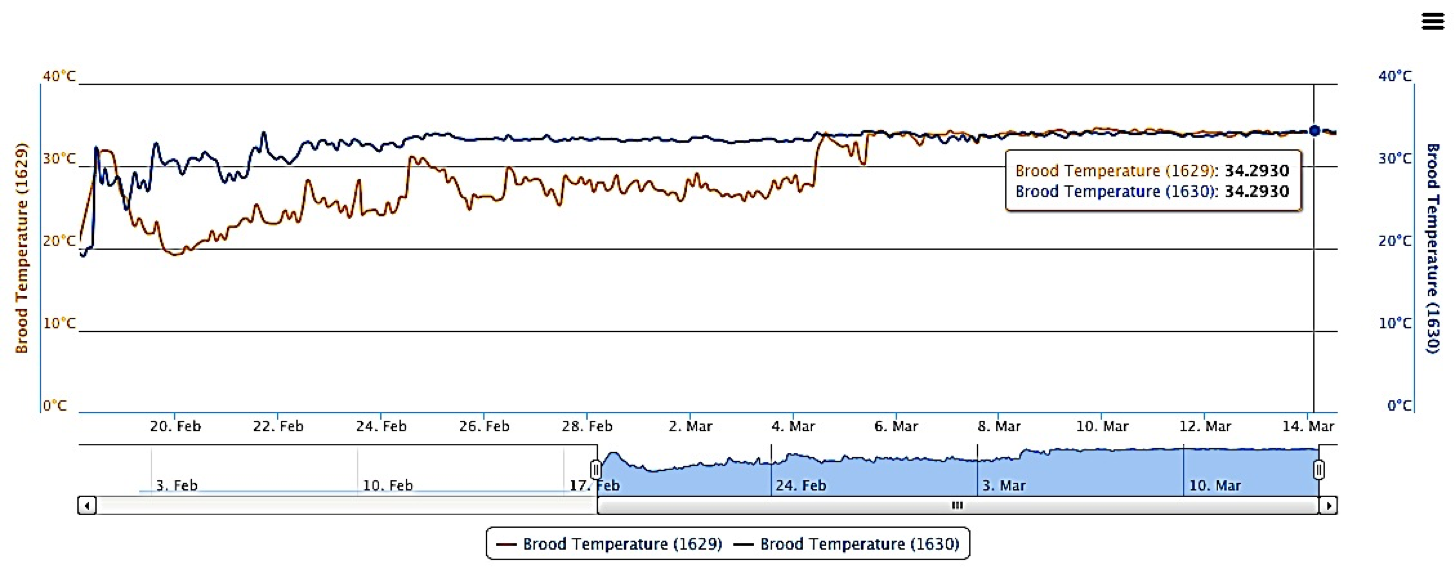 brood temperature